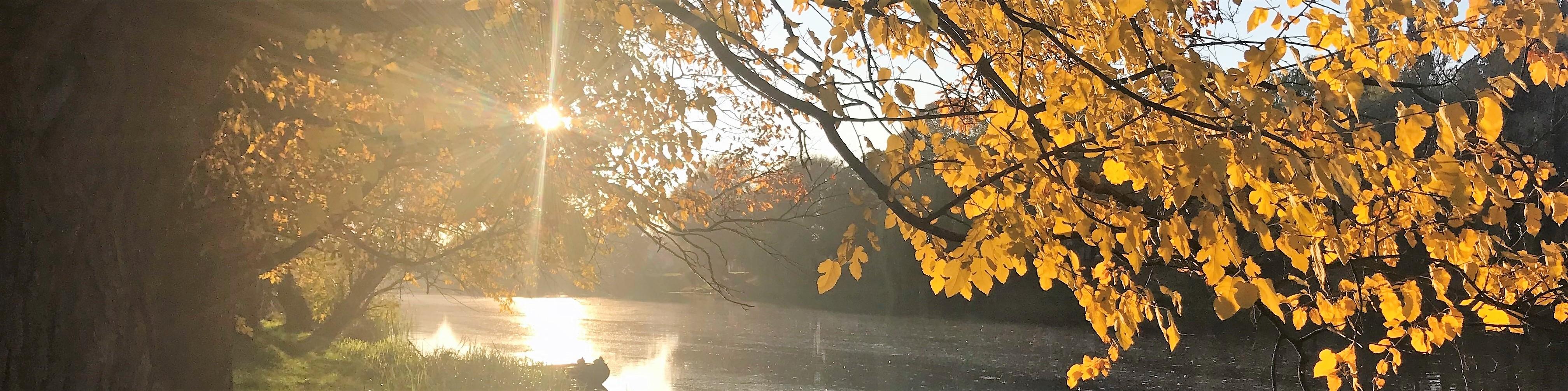 bosut jesen 1 (3)