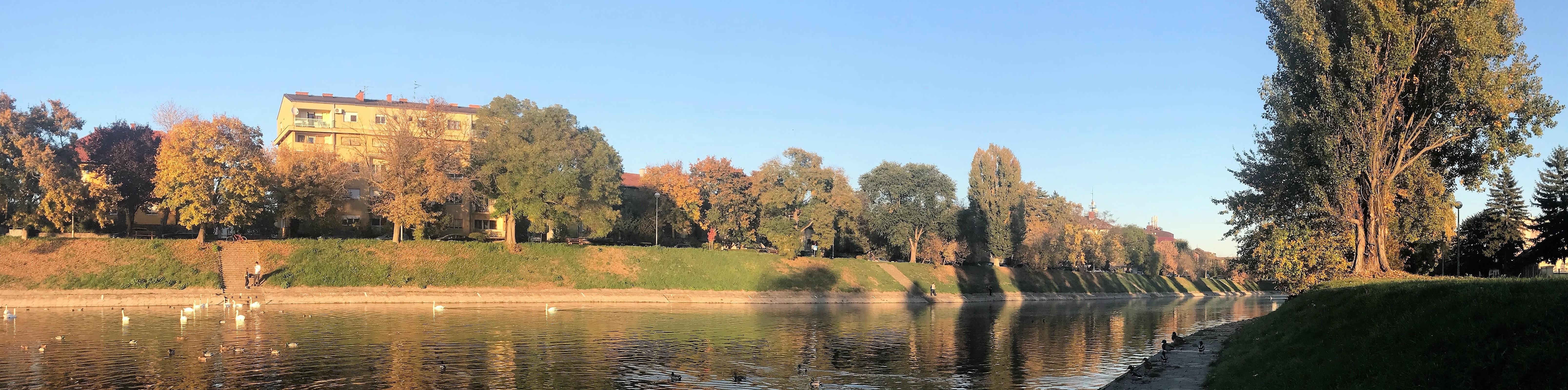 bosut jesen 2 (2)